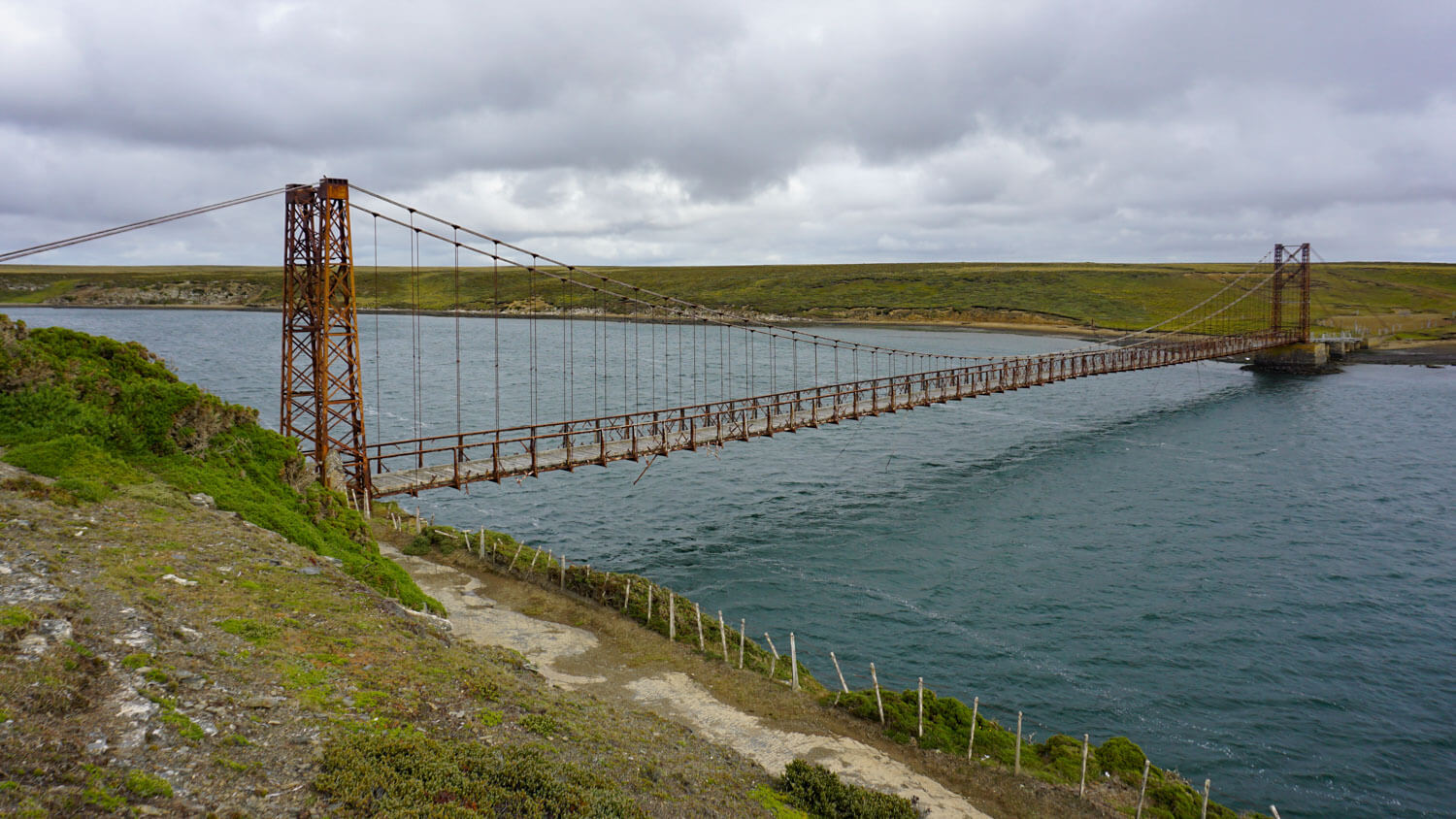 Foray into the Falklands: A Complete Falkland Islands Itinerary