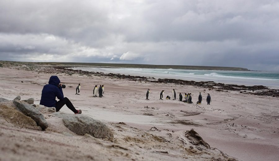 Top Hiking Trails & Walking Tips in Falklands