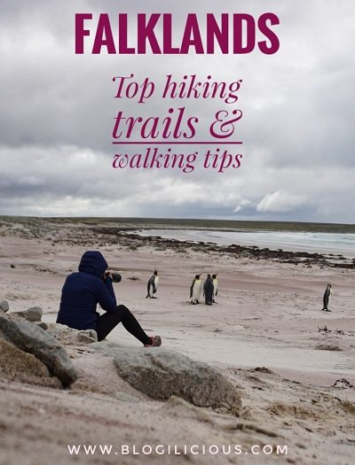 Top hiking trails and walking tips