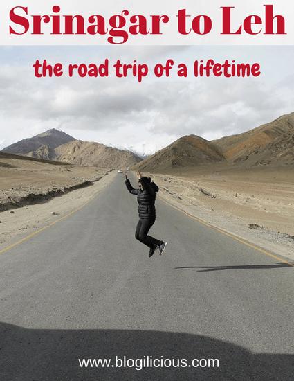 The Road Trip of a Lifetime: Srinagar to Leh