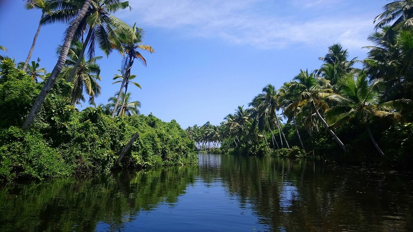 Fun things to do in Alleppey and Thekkady
