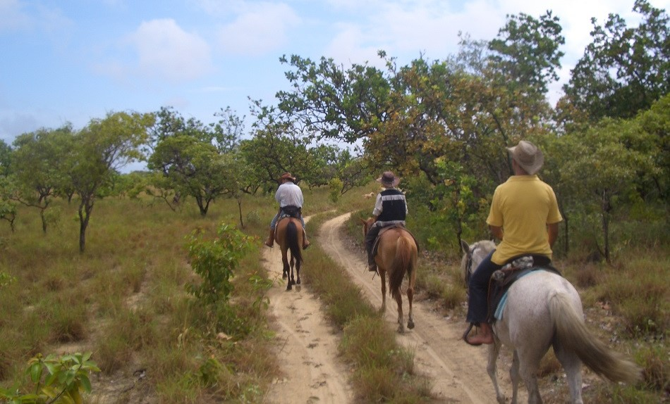 Tips for Planning the Perfect Trip to Guyana