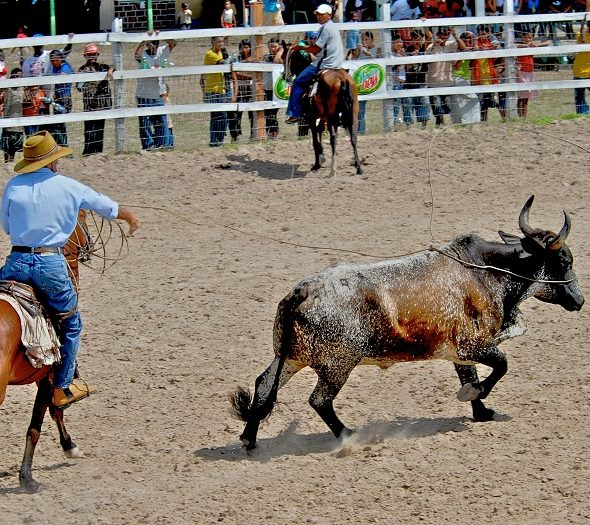 Rupununi Rodeo: The Greatest Show in Guyana